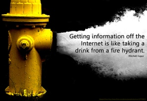Getting information from the internet is like trying to drink water from a fire hydrant