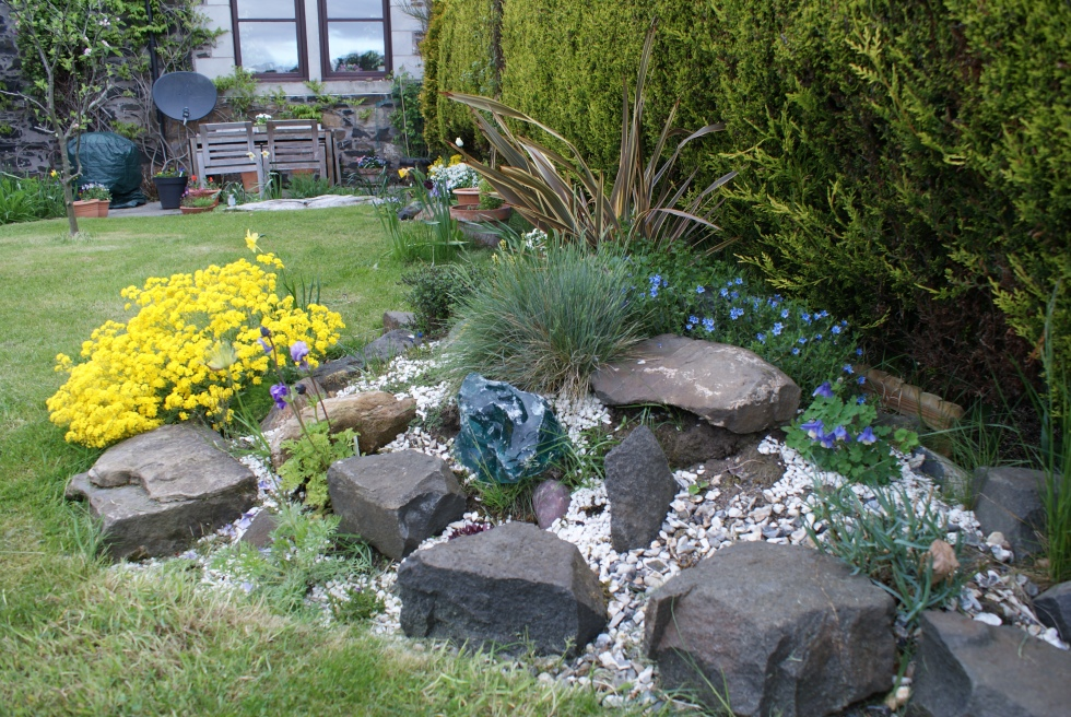 The rockery, don't mind the weeds!